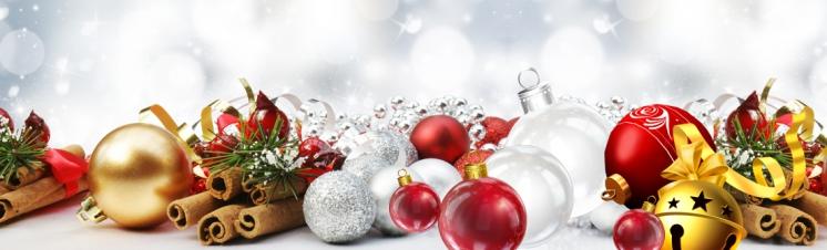 Коледни и Новогодишни предложения